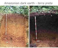 Terra preta soil on the right is dark due to the high quantities of biochar present. On the left is typical rainforest soil; pale, limited nutrients and low carbon content.