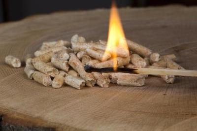 A bag of wood pellets make a convenient and quick fire starter