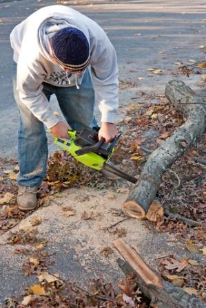 Even smaller branches can be a problem - a little saw like this can get quite a bit done.