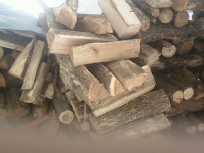 my cut firewood