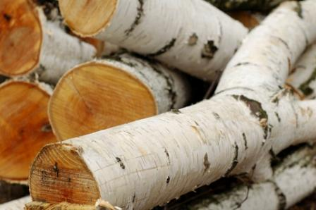 When burnt, silver birch firewood tends to burn down rapidly with hot  flames, but leaves very little in the way of embers. In a wood stove this  would mean ...